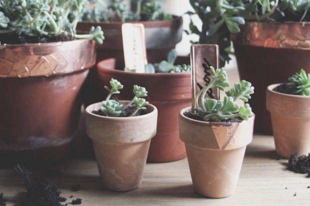 Le Pot En Terre Tout Simplement Mademoiselle Claudine Le Blog