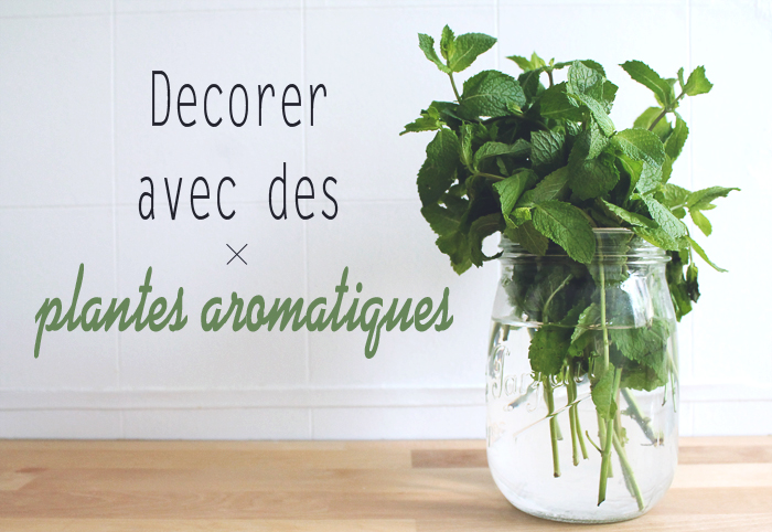 decorer avec des plantes aromatiques mademoiselle claudine le blog. Black Bedroom Furniture Sets. Home Design Ideas