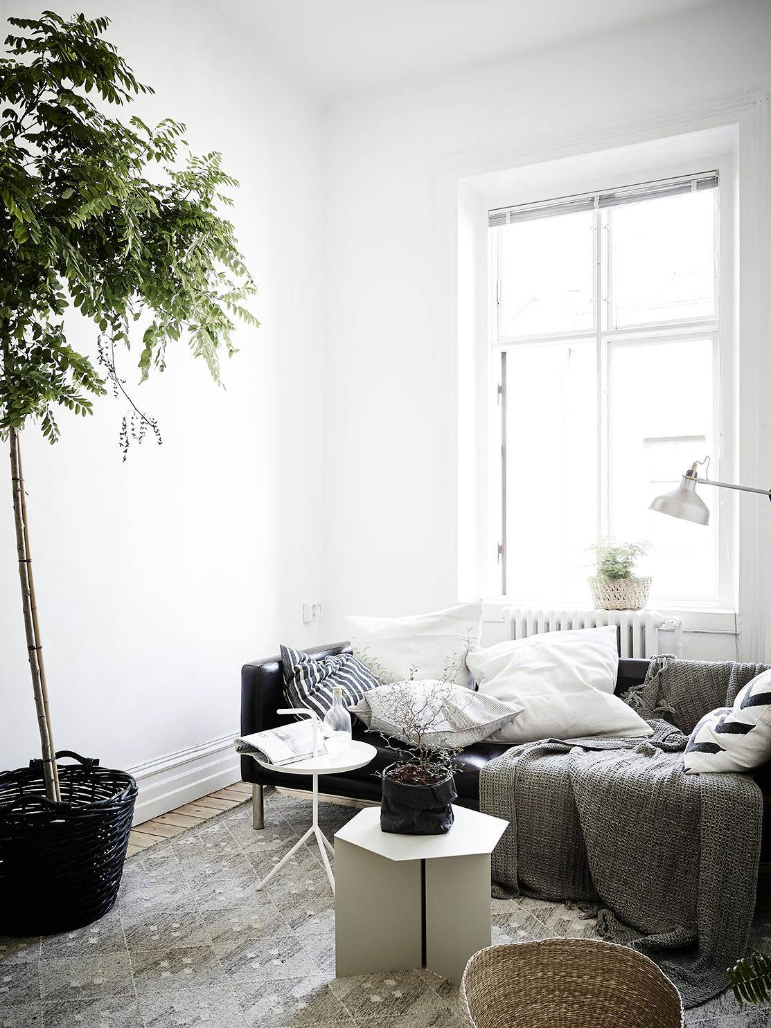 home-tour-green-attitude-salon-canapé-mademoiselle-claudine
