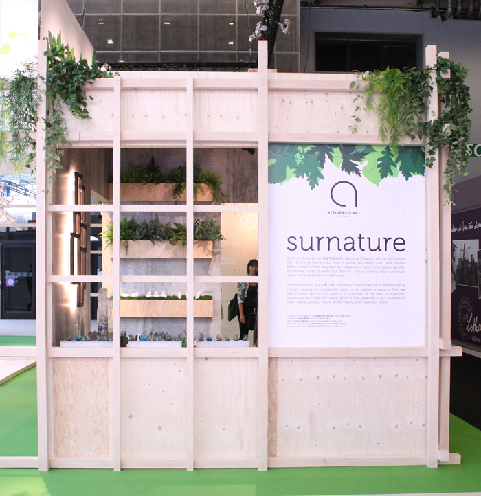 surnature-m&o2015-mademoisel-claudine