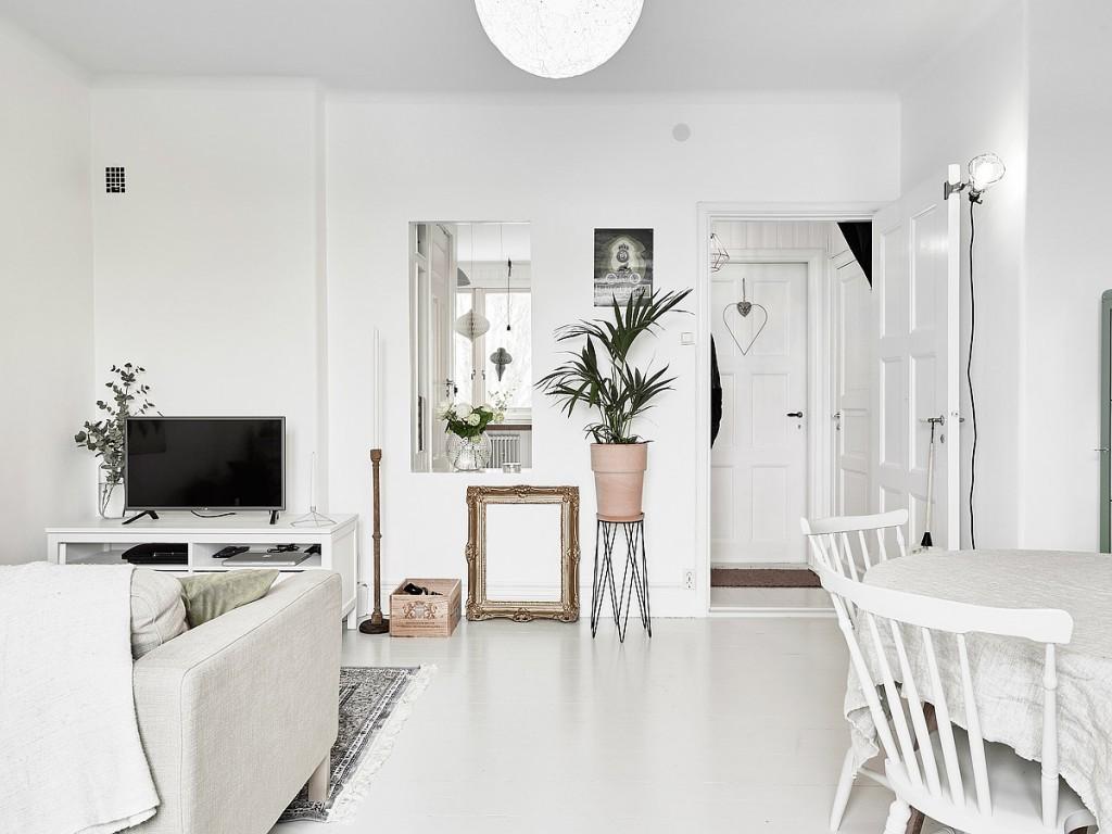 home-tour-appart-suedoise-salon-plante-cadre