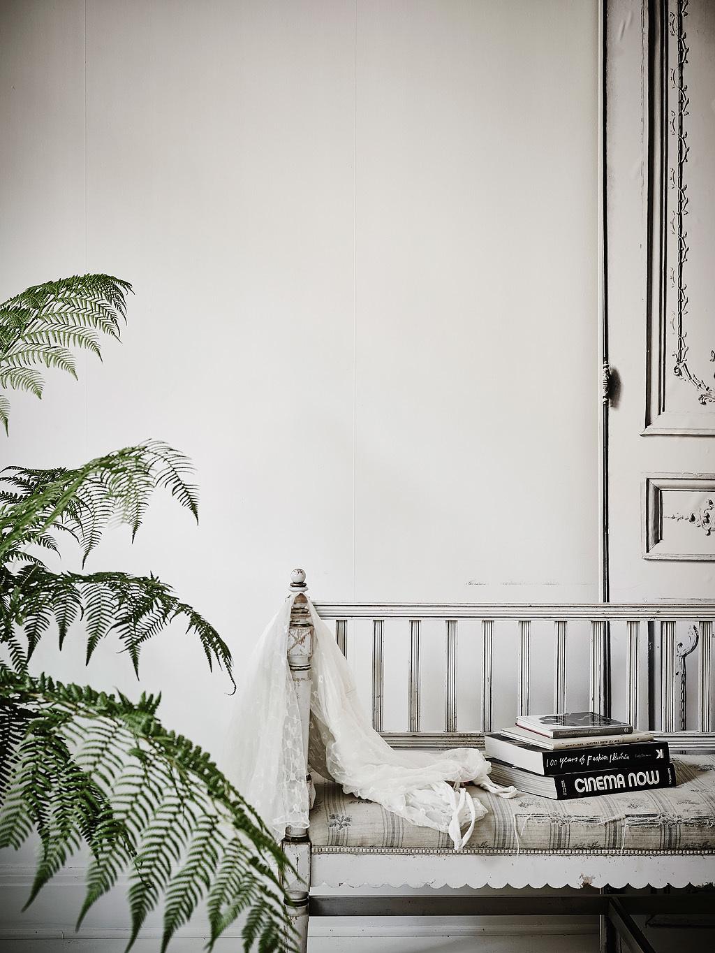 home-tour-detail-decoraiton-fougère-mademoiselle-claudine