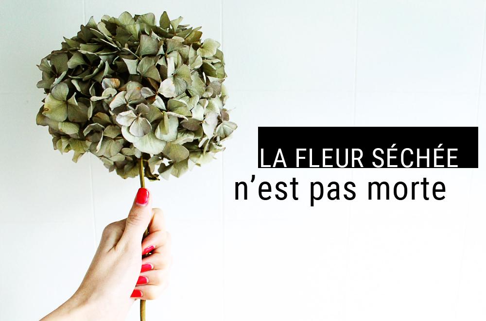 visuel-fleur-séchée-mademoiselle-claudine