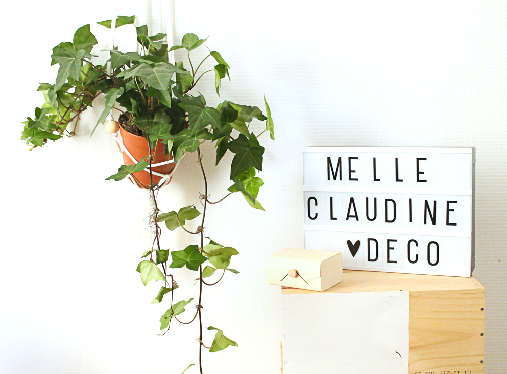 lightbox-lierre-graphique-madmeoiselle-claudine