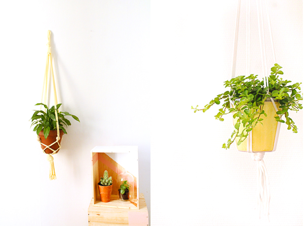 inspiration-couleur-jaune-citron-suspension-pour-plante-mademoiselle-claudine-