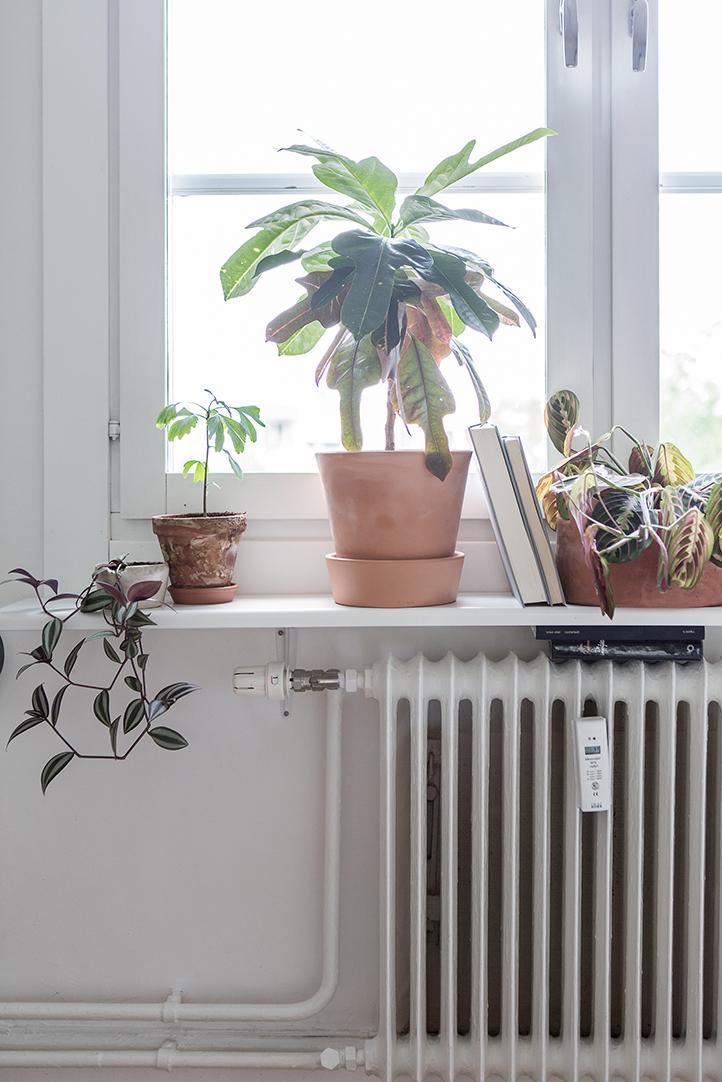 home-tour-vintage-scandinave-plante-fenetre-mademoiselle-claudine
