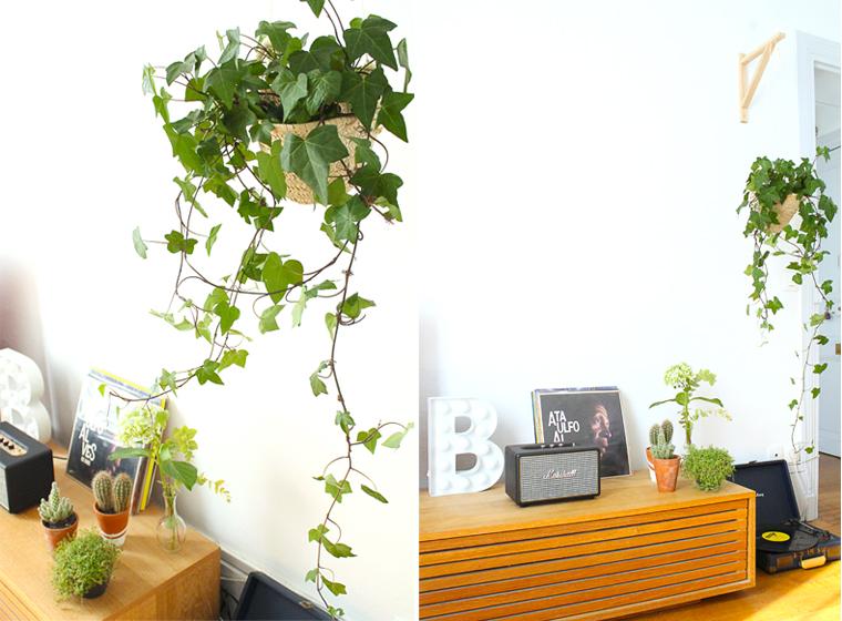 decoration-salon-suspension-plante-lecteur-vinyle-mademoiselle-claudine