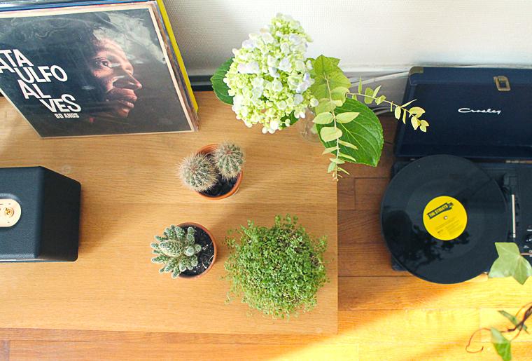 decoration-vinyle-cactus-mademoiselle-claudine