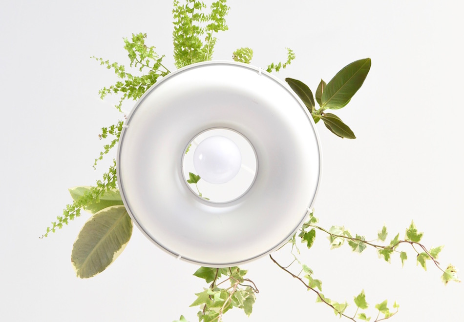 diy-lampe-verdure-marie-la-pirate-mademoiselle-claudine