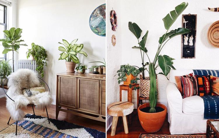 style-navajo-decoration-salon-fauteuil-plante-mademoiselle-claudine