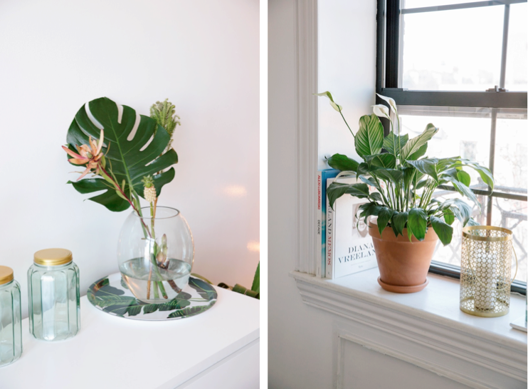 home-tour-new-york-plante-feuilles-mademoiselle-claudine