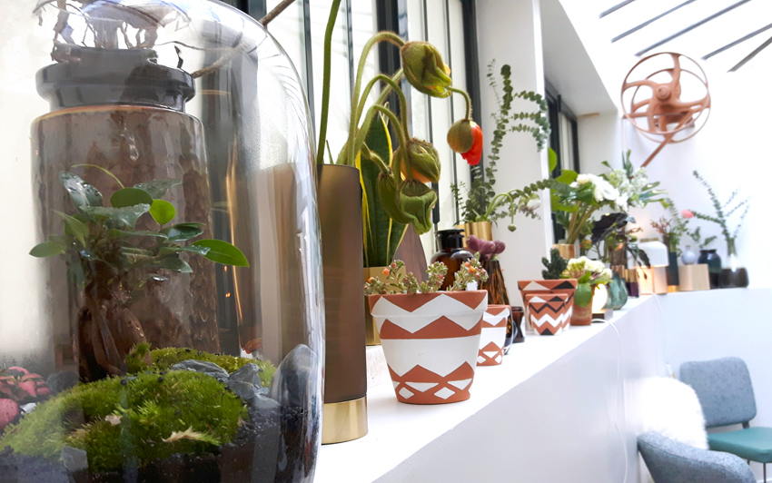 decoration-fleux-paris-terrarium-madmeoiselle-claudine-