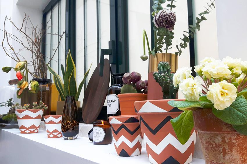 fleux-decoraiton-pot-terre-cuite-plante-madmeoiselle-claudine-