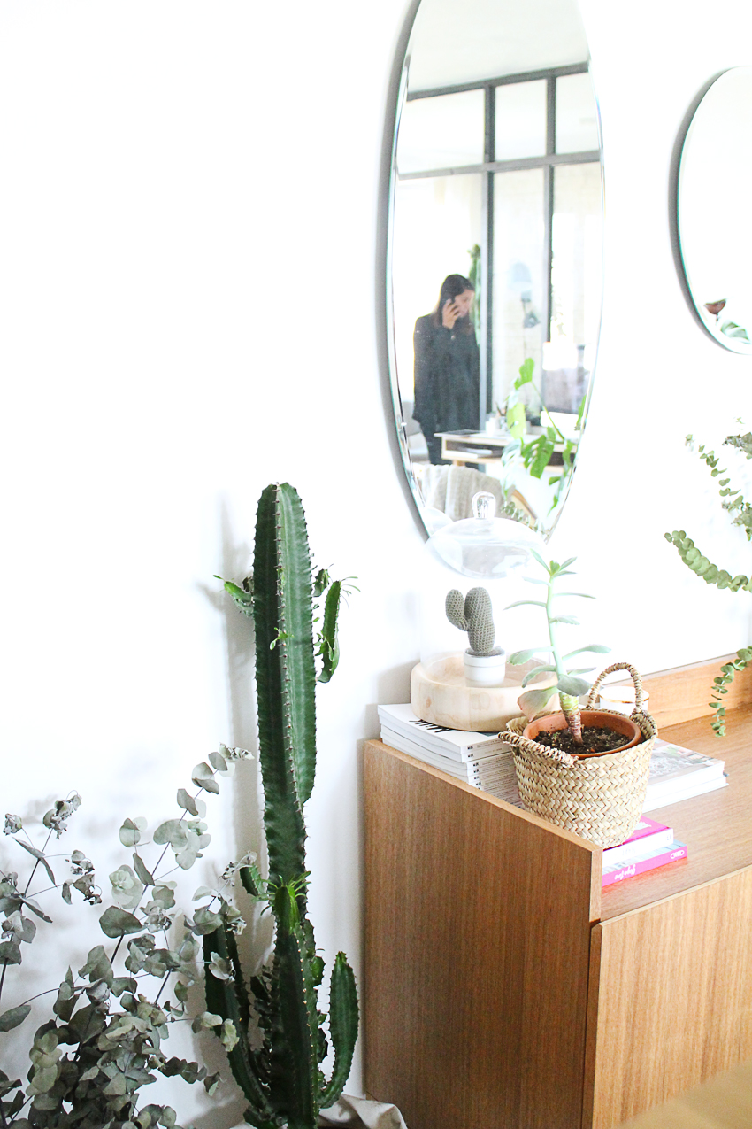decoration-miroir-cactus-juliana-decouvrir-design-mademoiselle-claudine