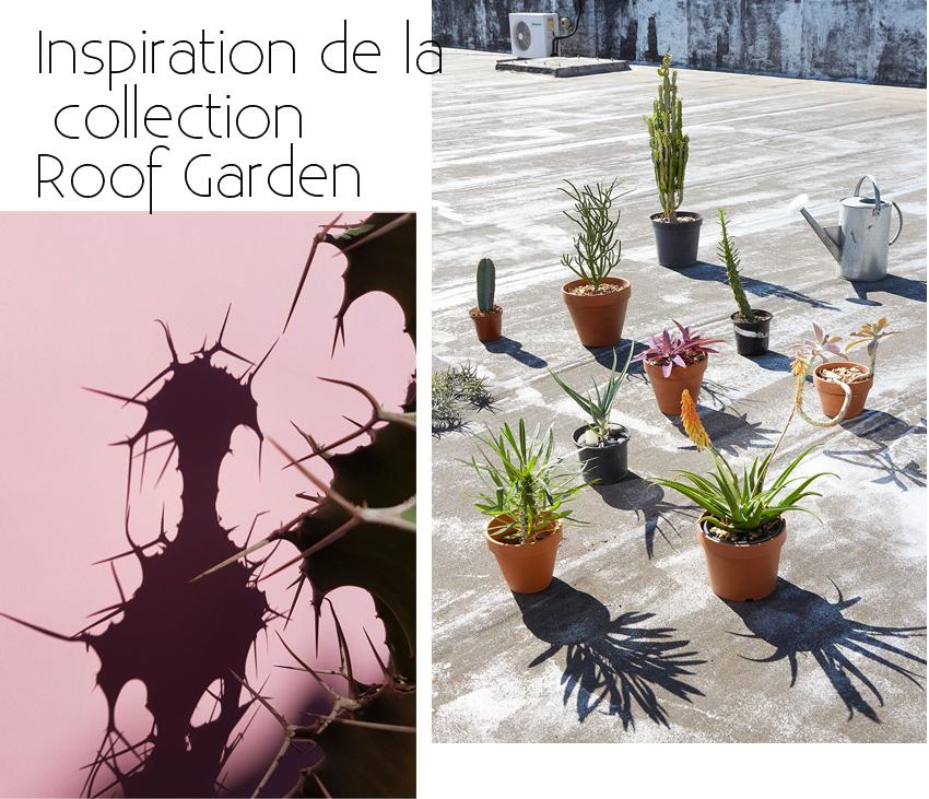 inspiration-cactus-collections-roof-garden-skinny-la-miinx-mademoiselle-claudine-