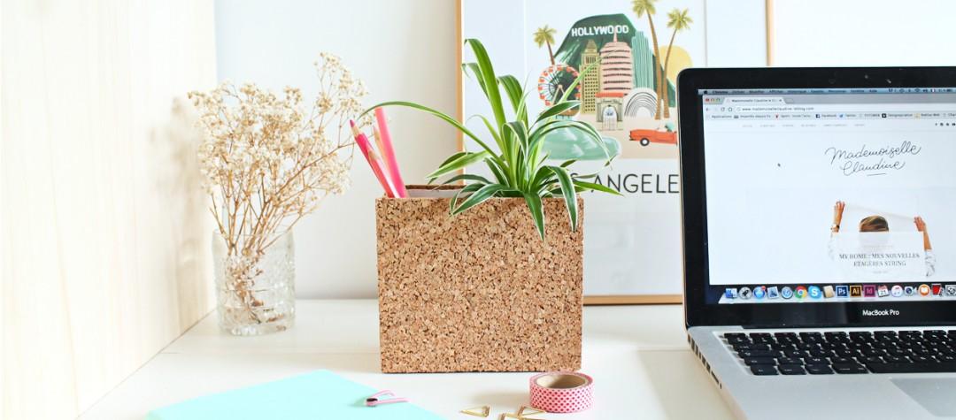 diy-pot-a-crayon-liege-plante