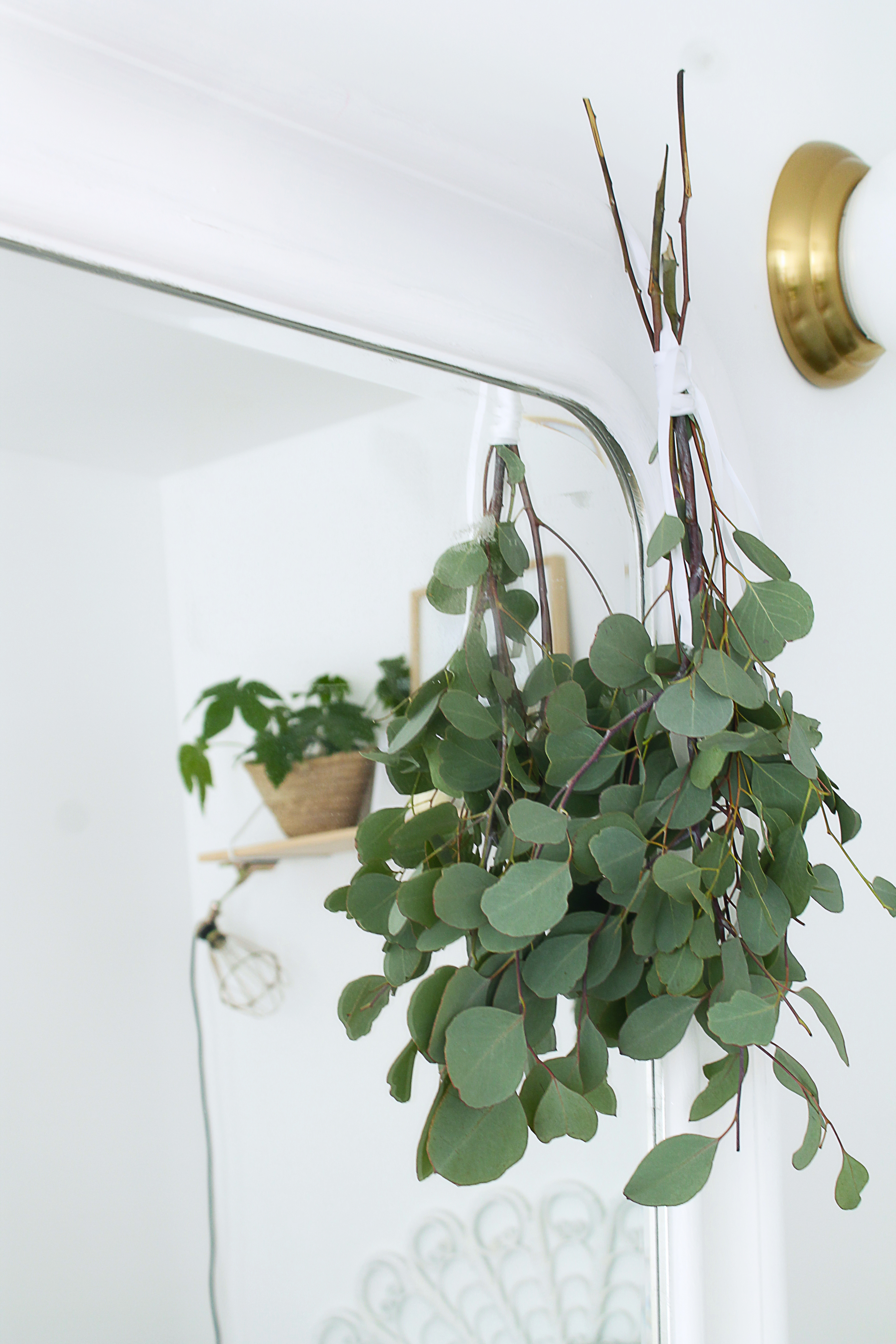 decoraiton-chaùbre-eucaliptus-seche-mademoiselle-claudine
