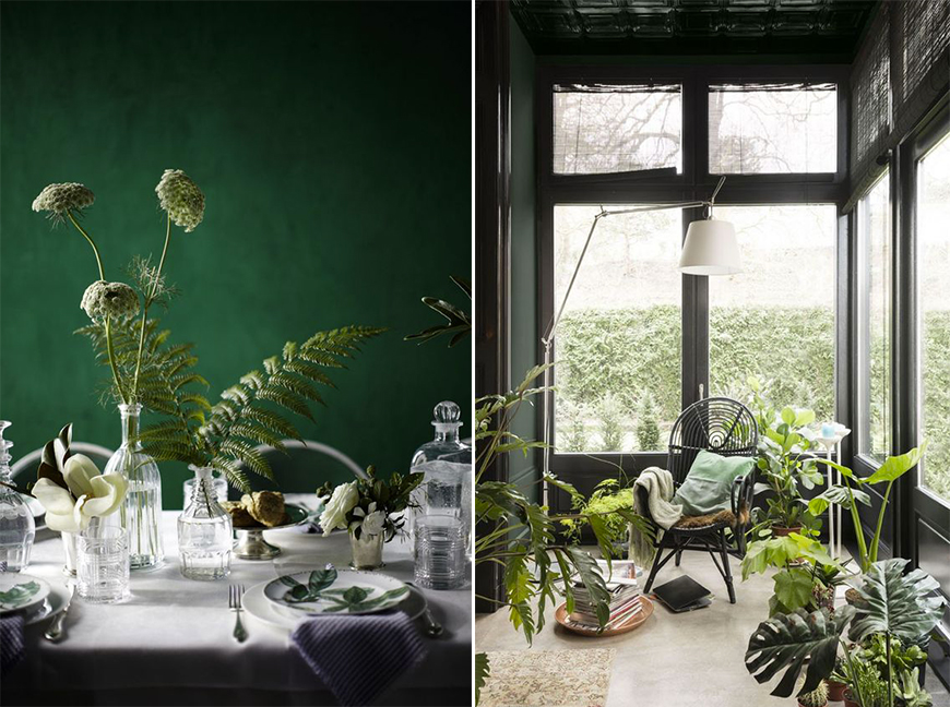 focus-couleur-vert-fonce-vegetal-green-mademoiselle-claudine-