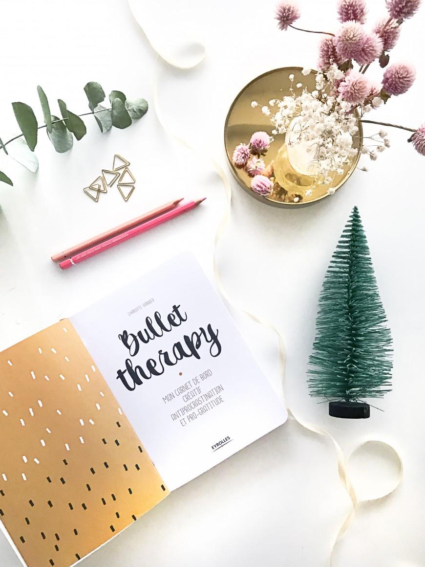 idee-cadeau-bullet-journal-mademoiselle-claudine-