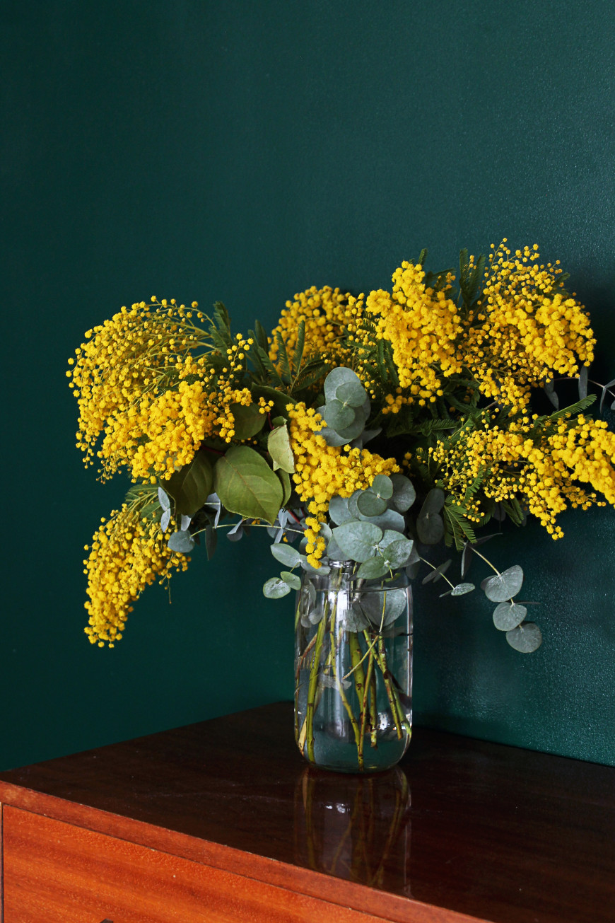 peinture vert forem mimosa mademoiselle claudine
