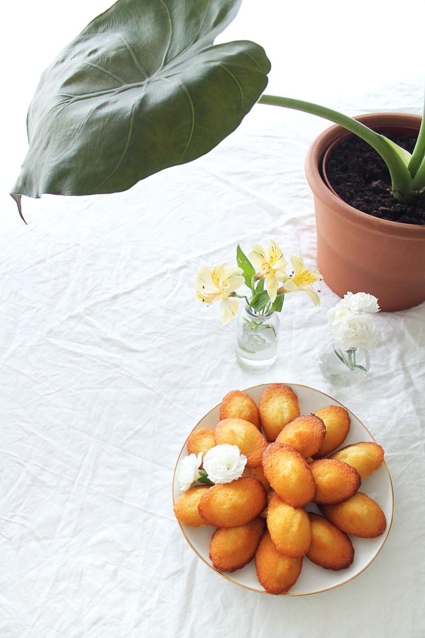 recette de madeleine facile mademoiselle claudine