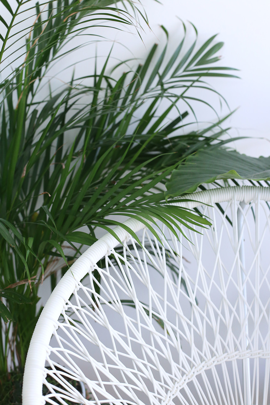 fauteuil-blanc-plante-mademoisele-claudine-bis-