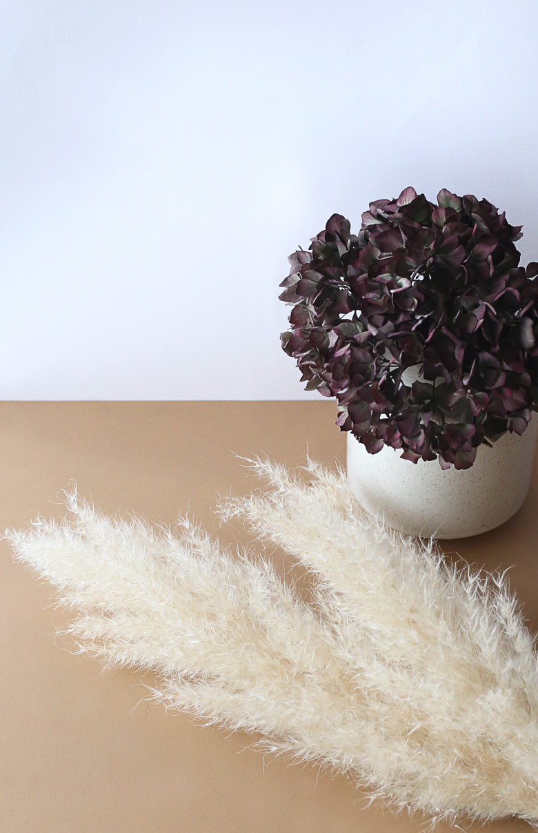 hortensia-seche-peinture-miel-ambre-dulux-valentine-mademoiselle-claudine-