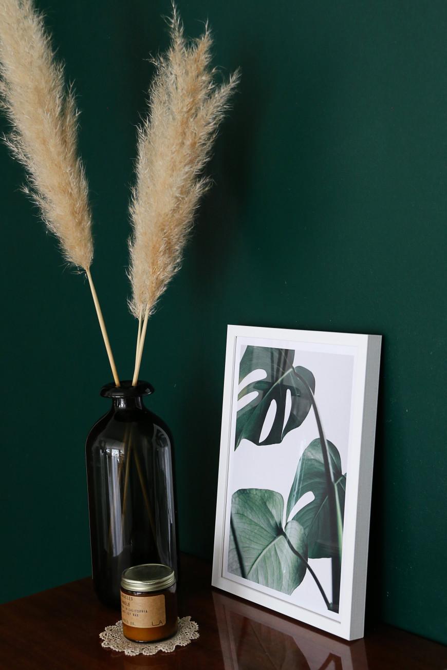 decoration-affiche-plante-mademoiselle-claudine-