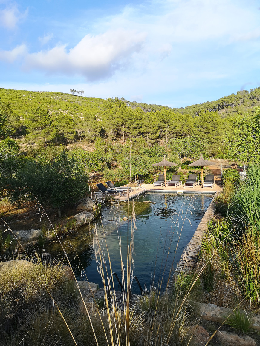 piscine-agroturimse-finca-can-marti-mademoiselle-claudine-