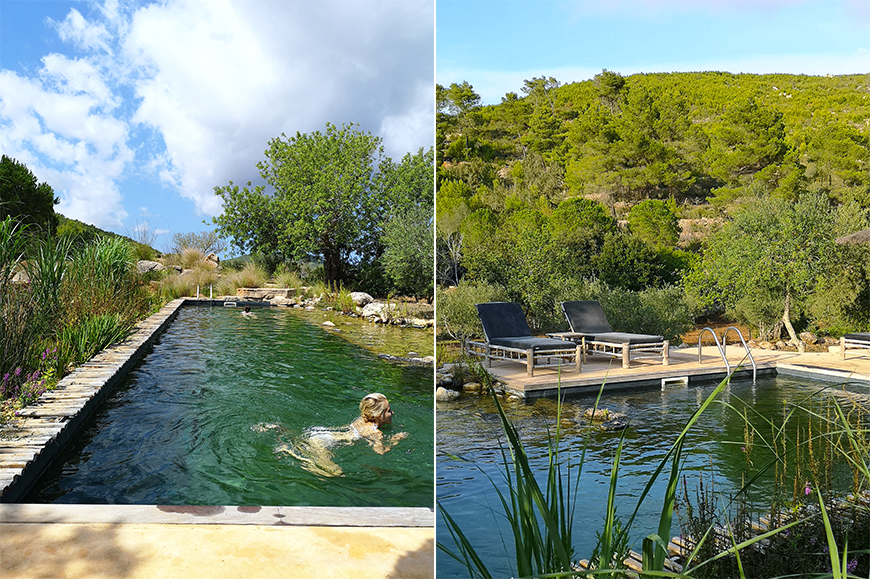 piscine-naturelle-finca-can-marti-agroturisme-ibiza-mademoiselle-claudine-